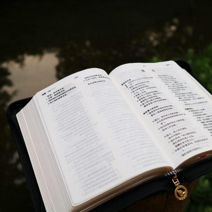 2020 教会事工证书 (CCM) 7至12月学期课程